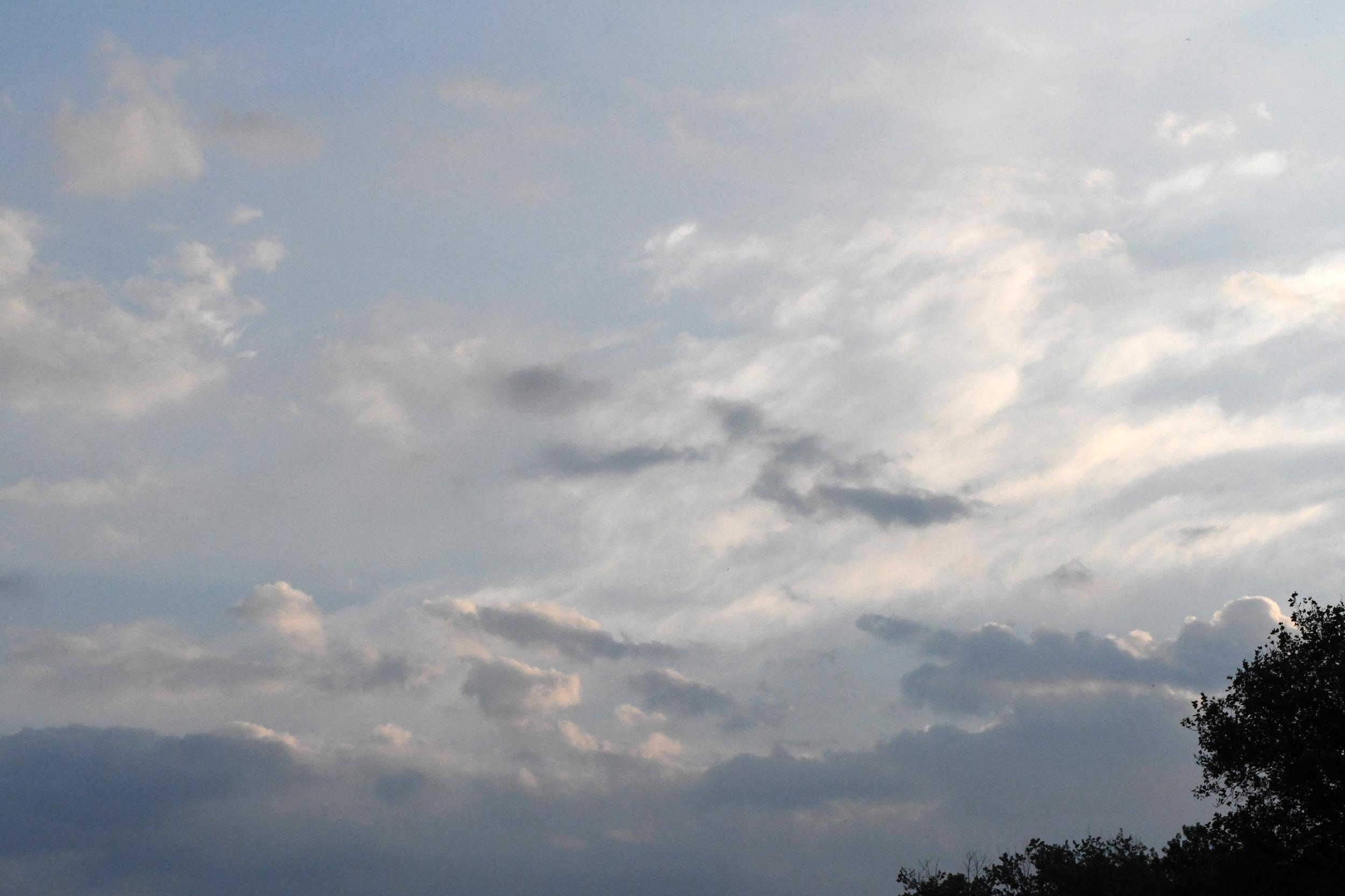 Constable sky, Prospect Park