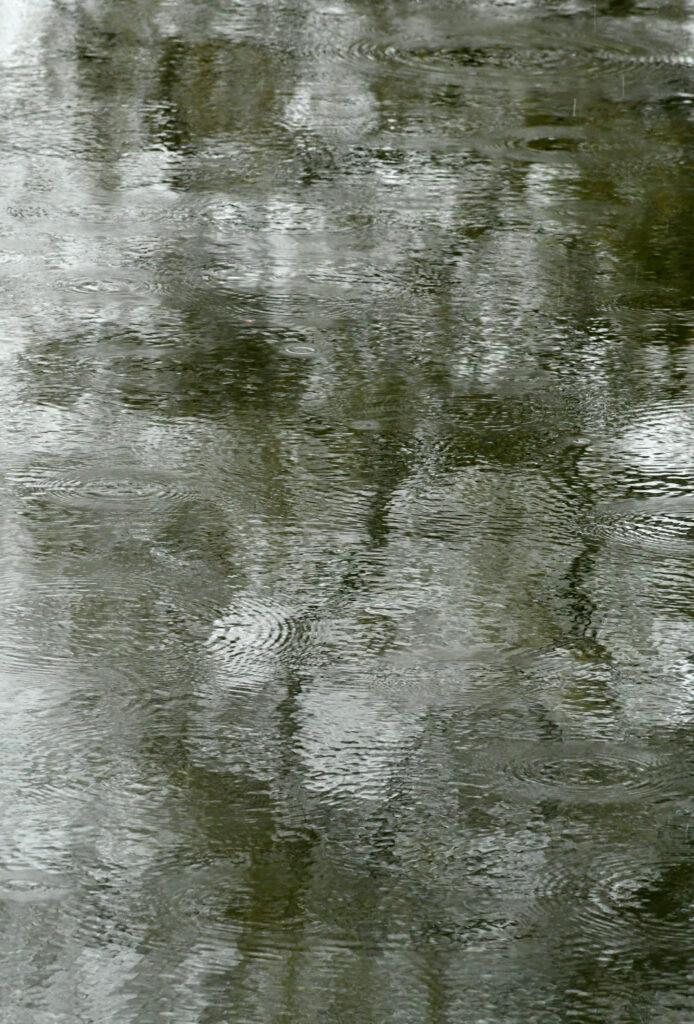 Hail on Lullwater, Prospect Park