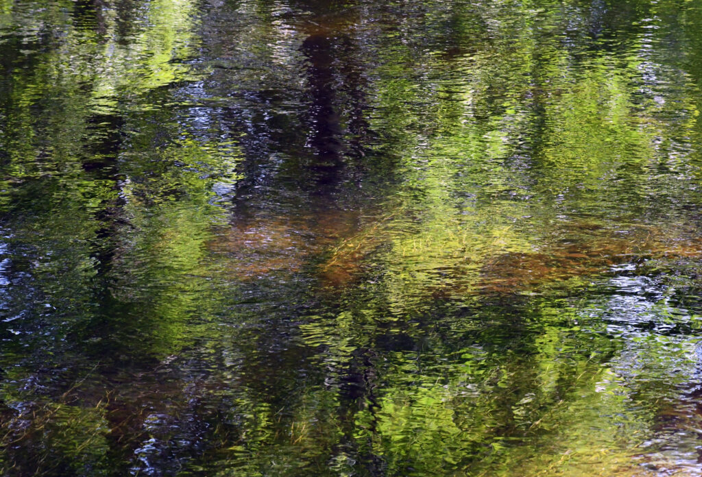 Delaware River, Kirkside Park, Roxbury, NY